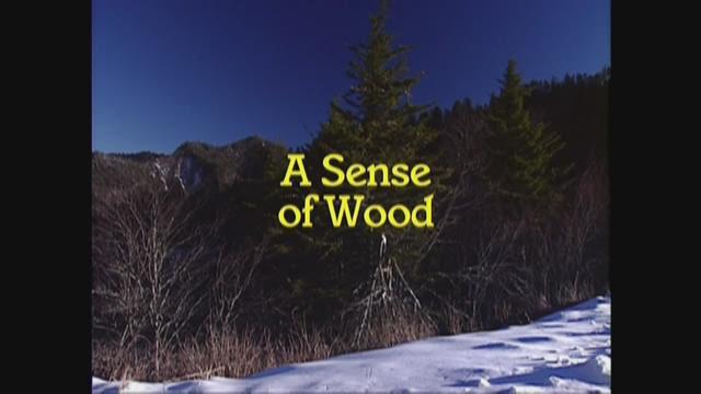 A Sense of Wood