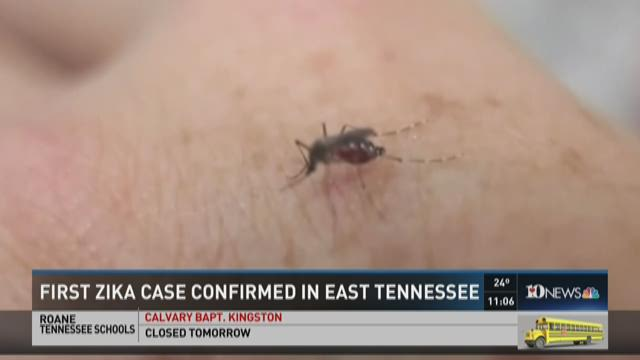 First Zika case confirmed in East Tenn.