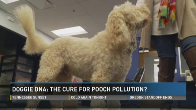Doggie DNA: Cure for pooch pollution