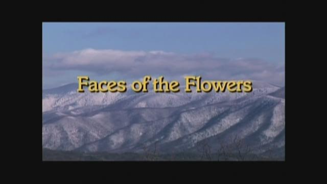 Faces of the Flowers