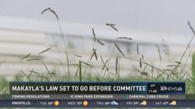 House committee to take up several gun bills Tuesday