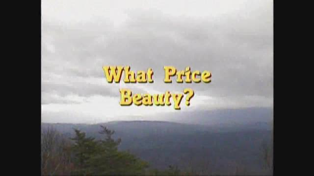 What Price Beauty?
