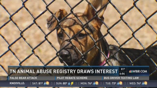 Animal Abuse Registry draws interest