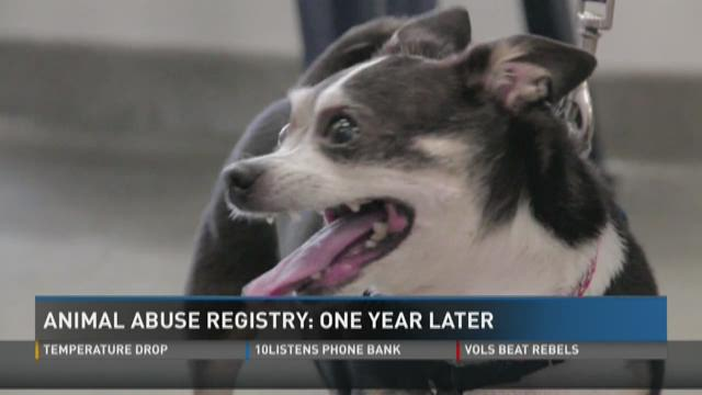 Wbircom Tennessees Animal Abuse Registry One Year Later - Animal abusers will finally registered just like happens sex offenders