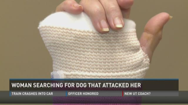 Woman searching for dog that attacked her