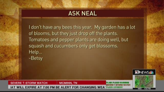 Ask Neal: July 1