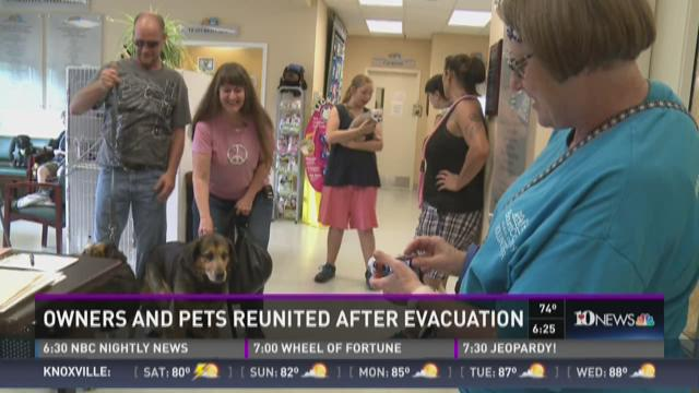 Linda Key is reunited with her dogs. She was evacuated