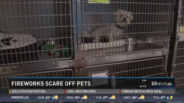Animal experts warn about pets and fireworks