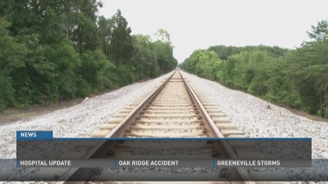 Fish kill in Maryville creek blamed on train derailment