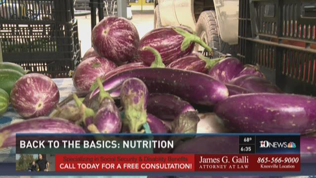 Back to the Basics: Nutrition