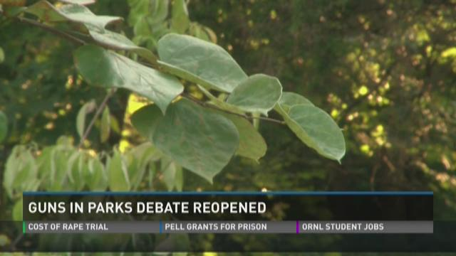 AG's guns in parks opinion debated