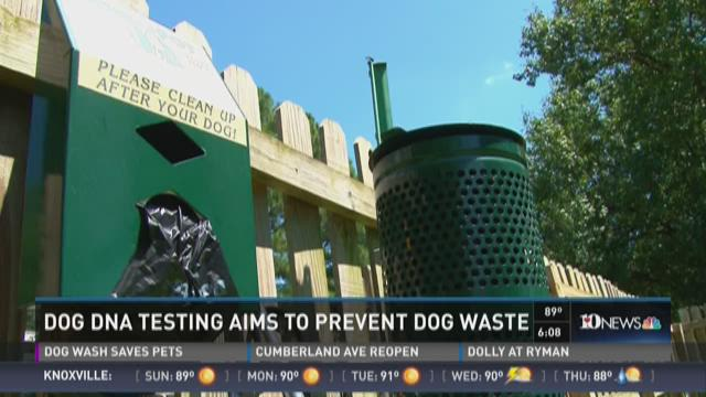 Apartment complex uses dog DNA to track down waste violaters