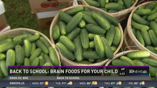 Back to school: Brain foods for your child