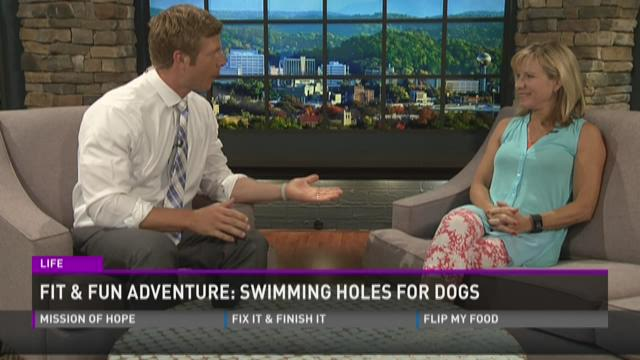 Fit and Fun Adventure: Swimming Holes For Dogs