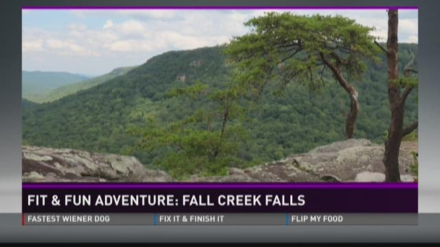 Fit and Fun Adventure: Fall Creek Falls