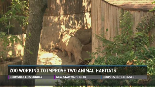 Zoo working to improve two animal habitats